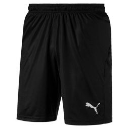 Puma Liga Shorts Core With Briefs Herre